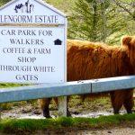Glengorm Castle Coffee Shop, Art Gallery & Farm Shop