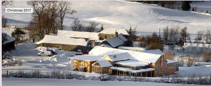 whitmuir-winter