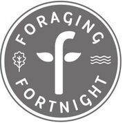FF-official-logo1