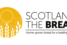 Sourdough FAQs from Scotland The Bread
