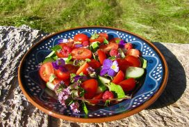 Foraged Salad with Summer Harvest Raspberry Dressing