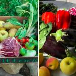 Contini delivers Milano market & Meals to your door