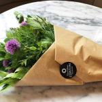 Contini Kitchen Garden Herbs