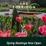 Spring Awakening at The Torridon